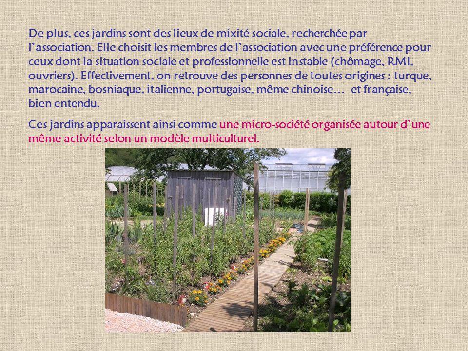 De plus, ces jardins sont des lieux de mixité sociale, recherchée par lassociation. Elle choisit les membres de lassociation avec une préférence pour