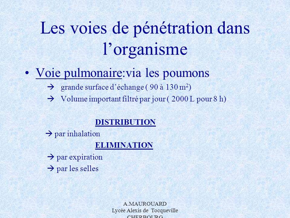 A.MAUROUARD Lycée Alexis de Tocqueville CHERBOURG Les voies de pénétration dans lorganisme Voie pulmonaire:via les poumons grande surface déchange ( 9