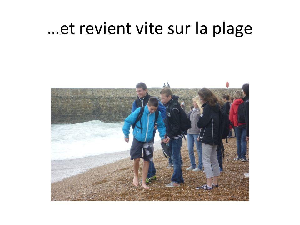 …et revient vite sur la plage