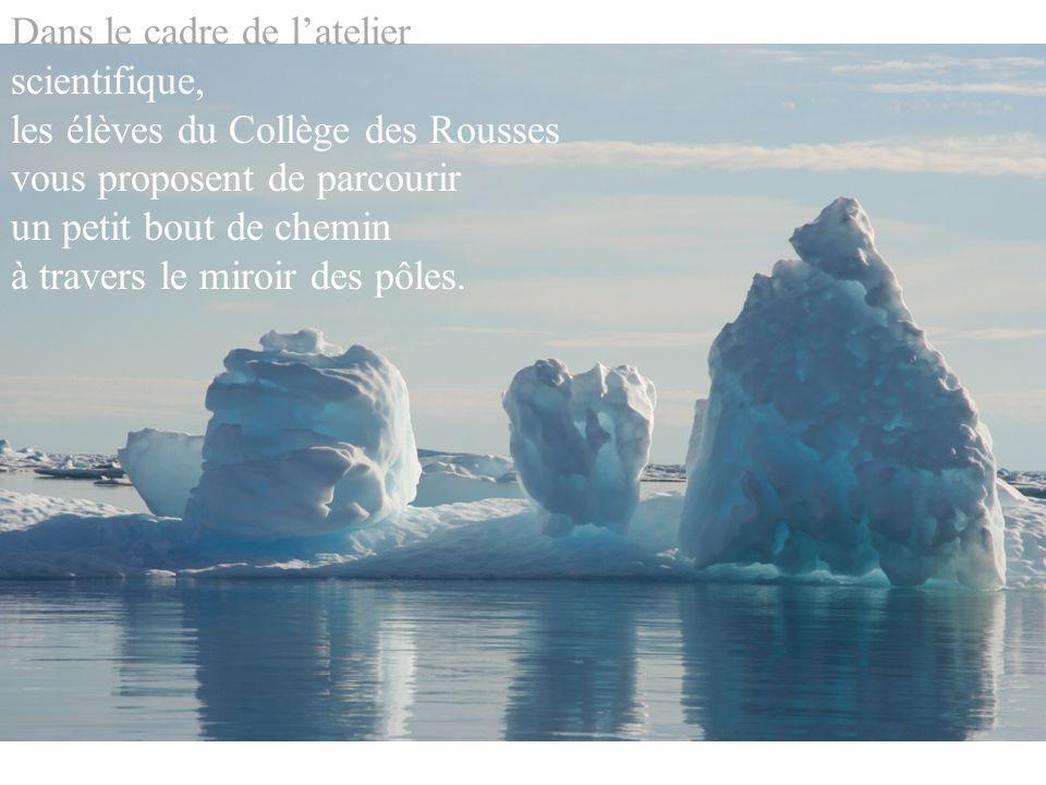 Ce fut loccasion pour ces élèves, en cette année polaire internationale, dappréhender, de découvrir, dapprendre, de réfléchir, de sinterroger…