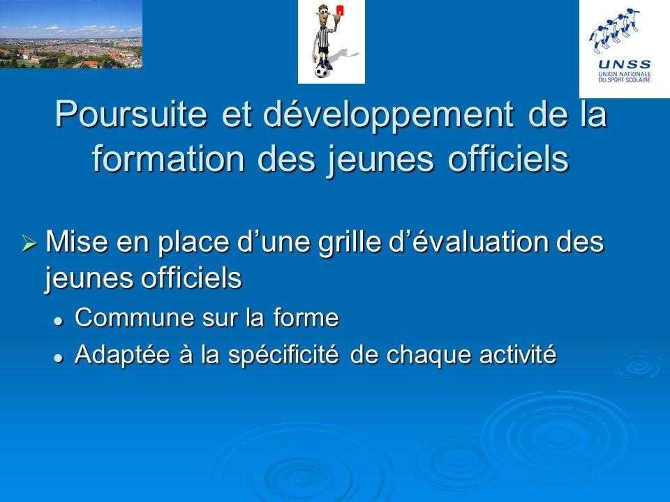 Poursuite des activités et des relations avec les différents partenaires Le fonctionnement du service départemental qui donne globalement satisfaction