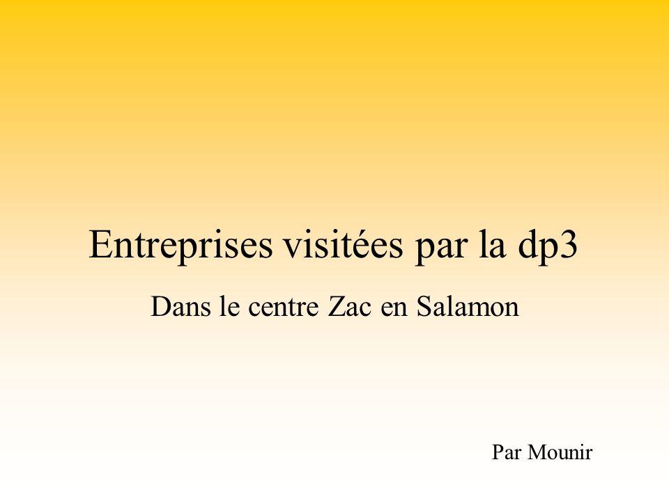 Entreprises visitées par la dp3 Dans le centre Zac en Salamon Par Mounir