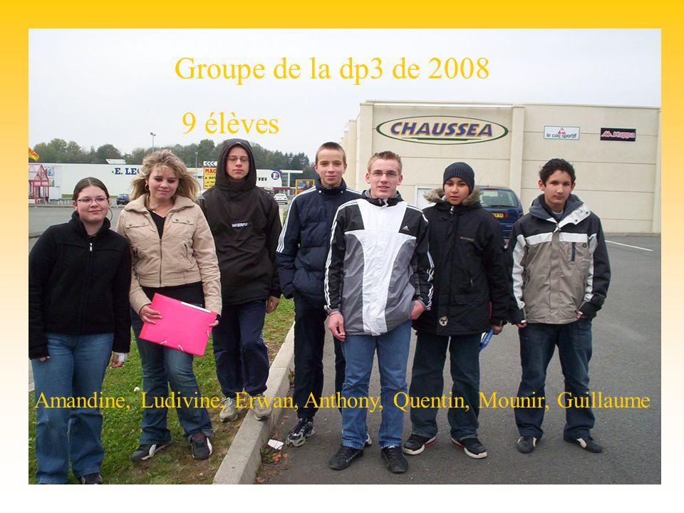 Groupe dp3 Groupe de la dp3 de 2008 9 élèves Amandine, Ludivine, Erwan, Anthony, Quentin, Mounir, Guillaume