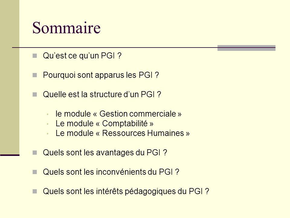 Sommaire Quest ce quun PGI ? Pourquoi sont apparus les PGI ? Quelle est la structure dun PGI ? le module « Gestion commerciale » Le module « Comptabil