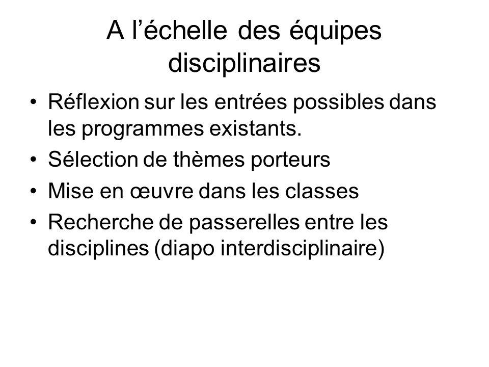 A léchelle des équipes disciplinaires Réflexion sur les entrées possibles dans les programmes existants.