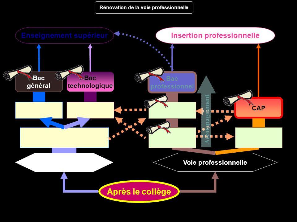 Insertion professionnelle Voie générale et Voie technologique Voie professionnelle Bac technologique Après le collège Bac professionnel Enseignement s