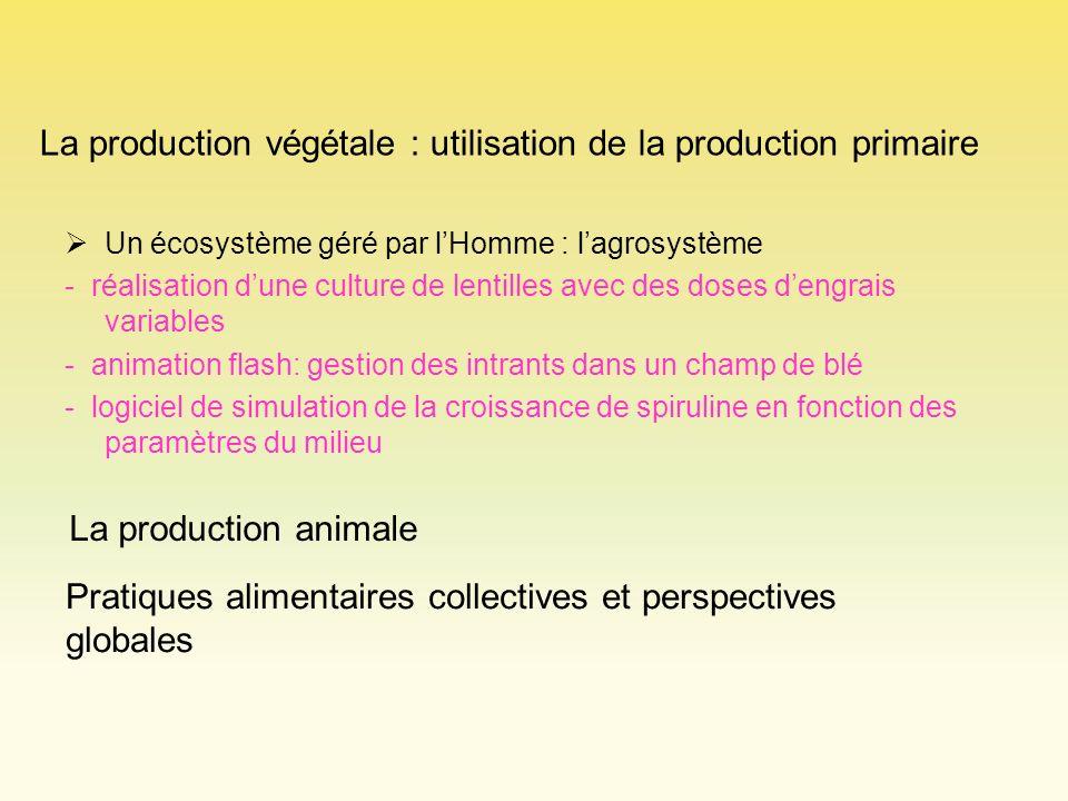 La production végétale : utilisation de la production primaire Un écosystème géré par lHomme : lagrosystème - réalisation dune culture de lentilles av