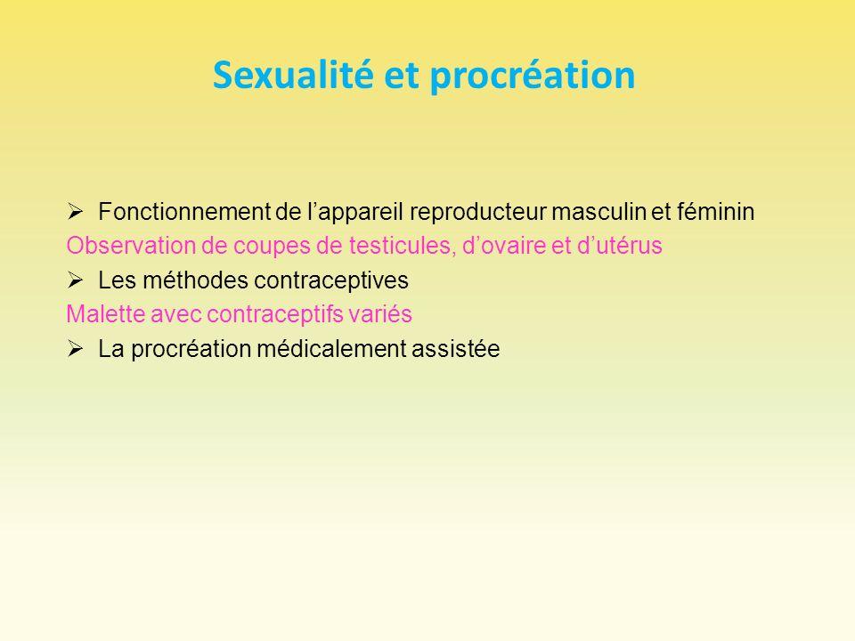 Sexualité et procréation Fonctionnement de lappareil reproducteur masculin et féminin Observation de coupes de testicules, dovaire et dutérus Les méth