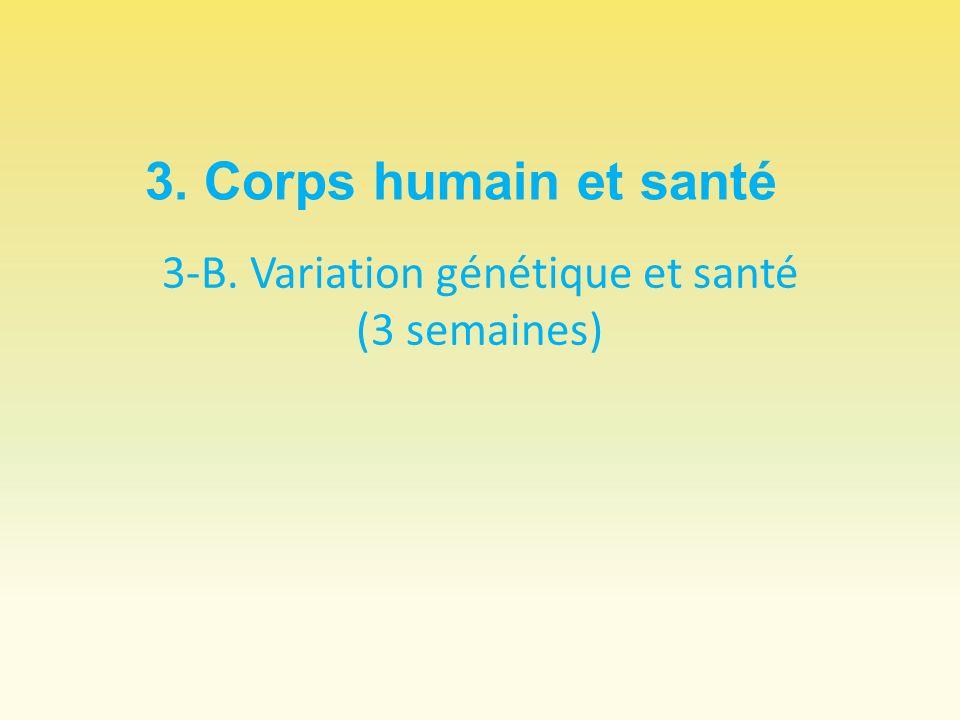 3-B. Variation génétique et santé (3 semaines) 3. Corps humain et santé