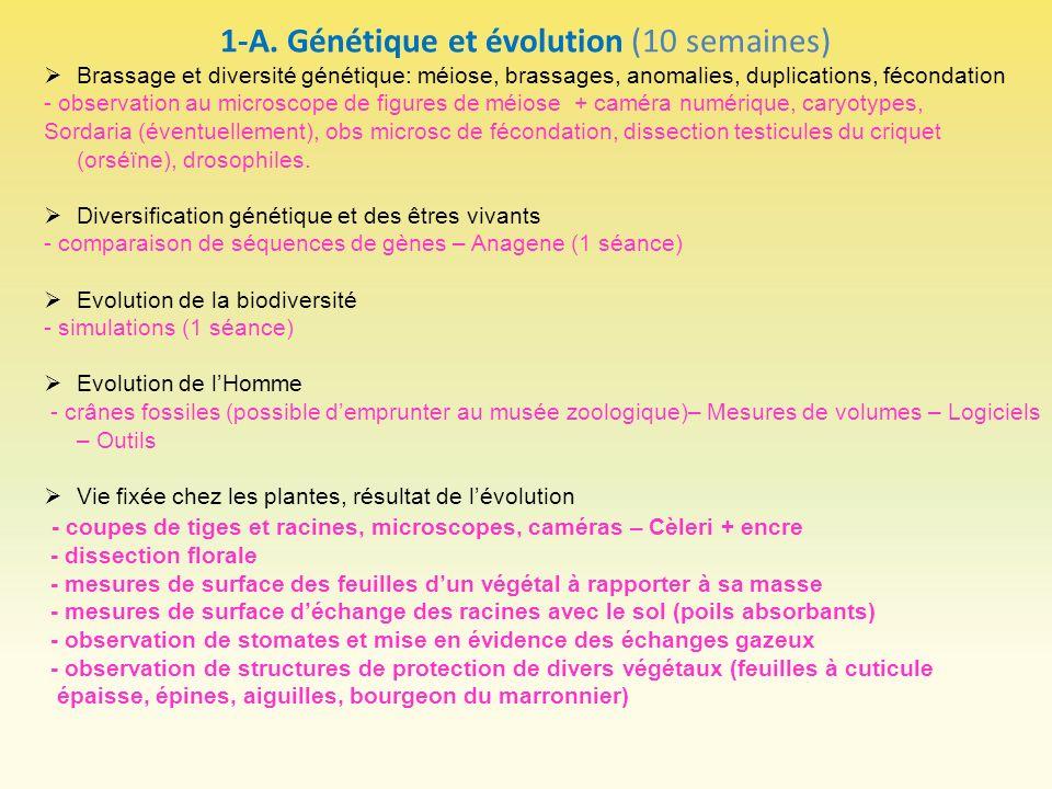 1-A. Génétique et évolution (10 semaines) Brassage et diversité génétique: méiose, brassages, anomalies, duplications, fécondation - observation au mi