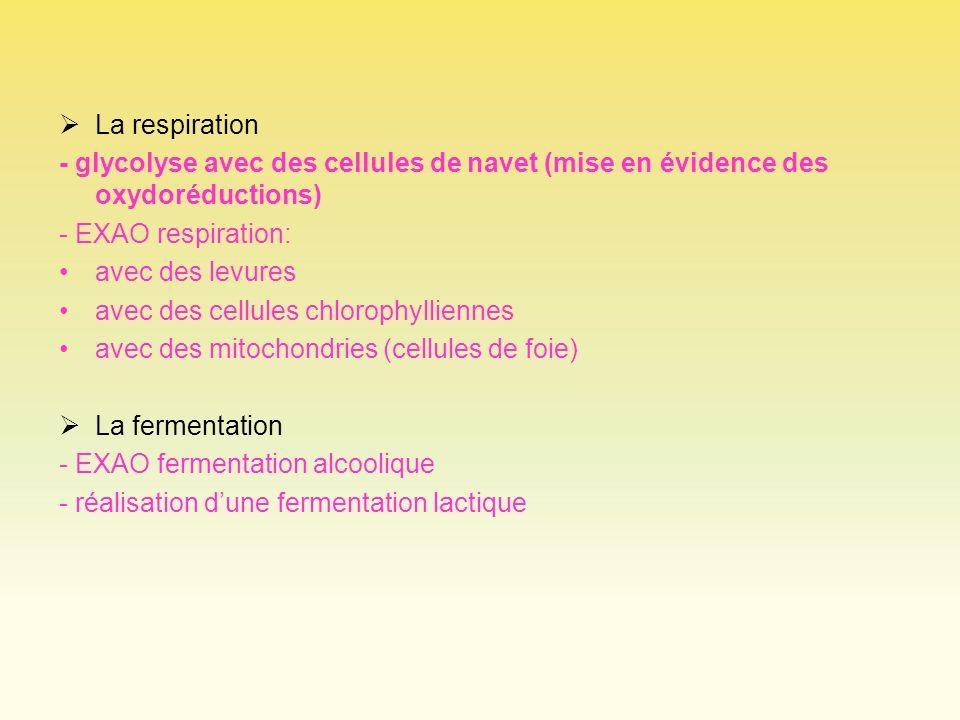 La respiration - glycolyse avec des cellules de navet (mise en évidence des oxydoréductions) - EXAO respiration: avec des levures avec des cellules ch