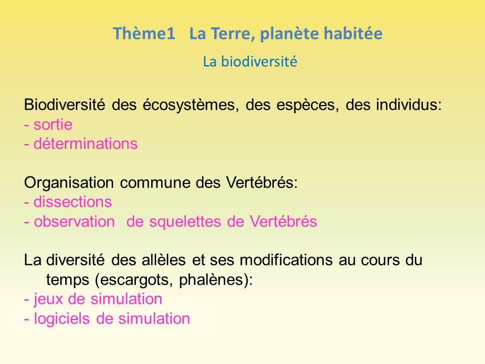 Thème1 La Terre, planète habitée La biodiversité Biodiversité des écosystèmes, des espèces, des individus: - sortie - déterminations Organisation comm