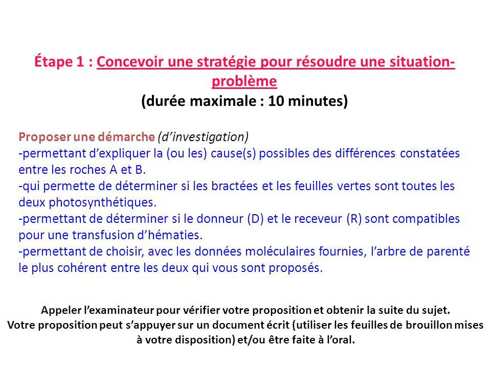 Étape 1 : Concevoir une stratégie pour résoudre une situation- problème (durée maximale : 10 minutes) Proposer une démarche (dinvestigation) -permetta