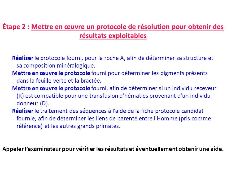 Étape 2 : Mettre en œuvre un protocole de résolution pour obtenir des résultats exploitables Réaliser le protocole fourni, pour la roche A, afin de dé