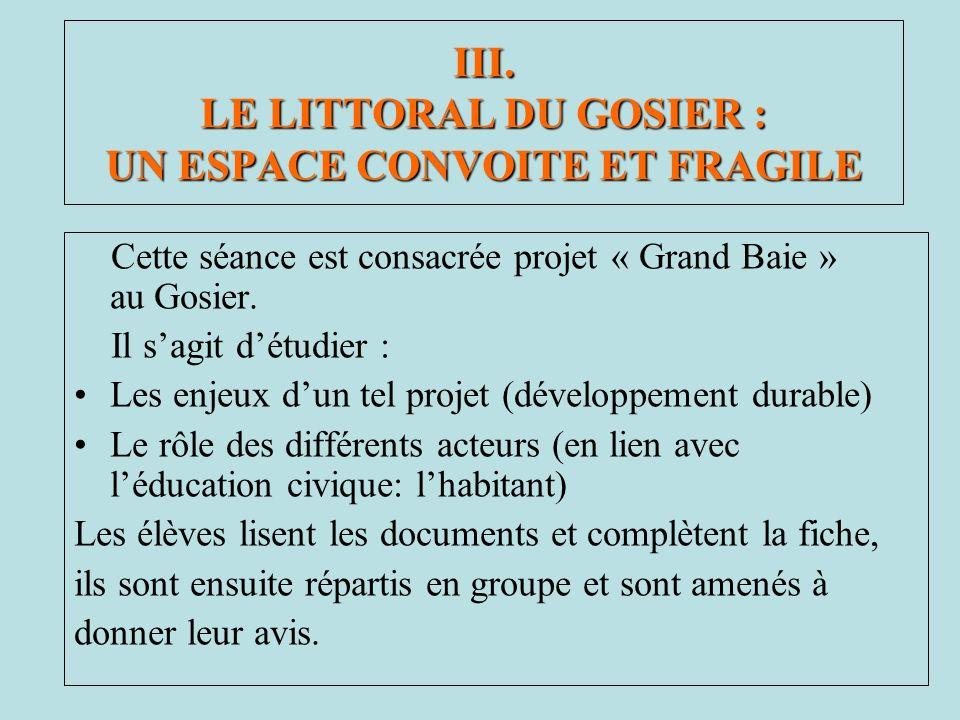 Cette séance est consacrée projet « Grand Baie » au Gosier. Il sagit détudier : Les enjeux dun tel projet (développement durable) Le rôle des différen