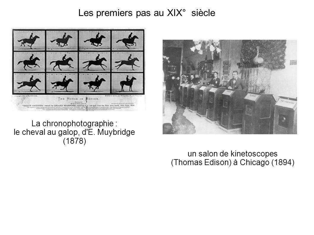 Les premiers pas au XIX° siècle La chronophotographie : le cheval au galop, d'E. Muybridge (1878) un salon de kinetoscopes (Thomas Edison) à Chicago (