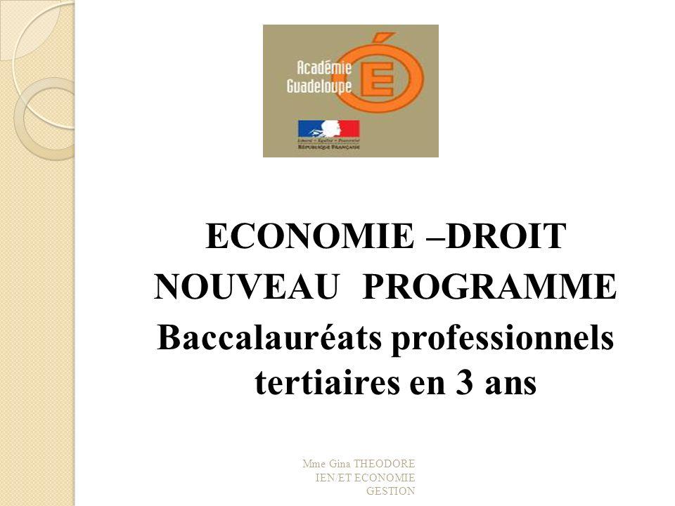 Programme dECONOMIE DROIT Le nouveau programme déconomie droit des baccalauréats professionnels tertiaires est en application depuis septembre 2010.