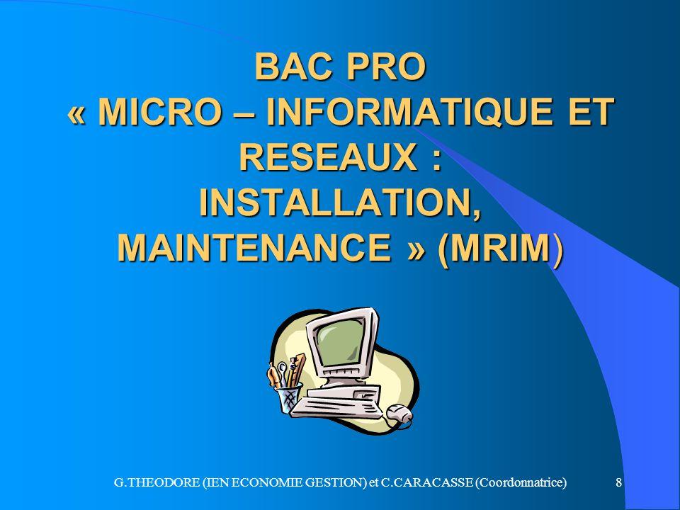 G.THEODORE (IEN ECONOMIE GESTION) et C.CARACASSE (Coordonnatrice)8 BAC PRO « MICRO – INFORMATIQUE ET RESEAUX : INSTALLATION, MAINTENANCE » (MRIM)