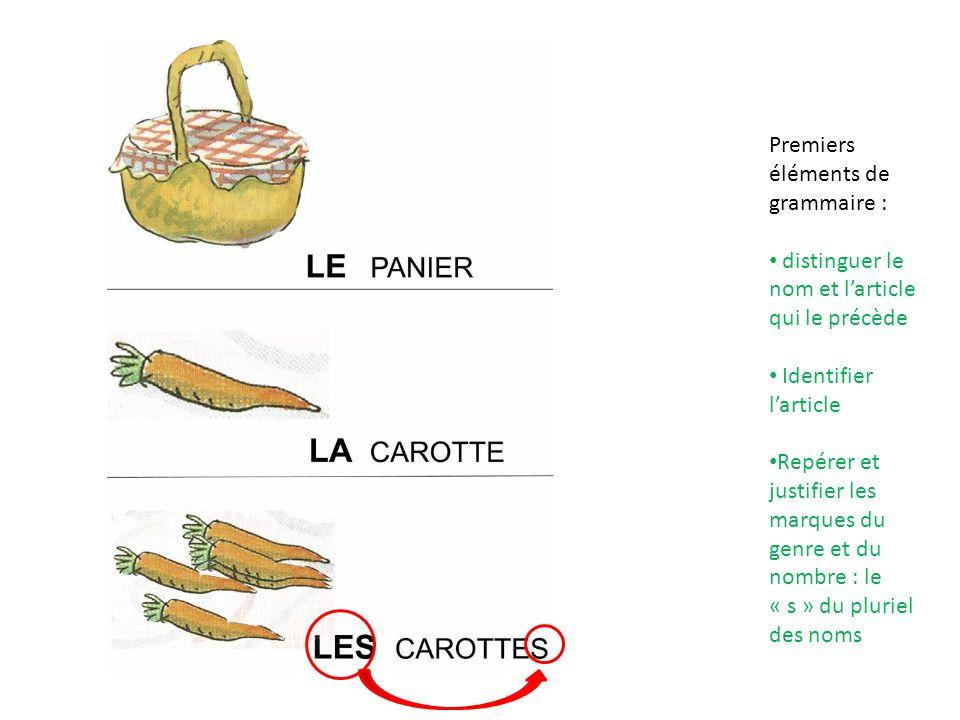 Premiers éléments de grammaire : distinguer le nom et larticle qui le précède Identifier larticle Repérer et justifier les marques du genre et du nomb
