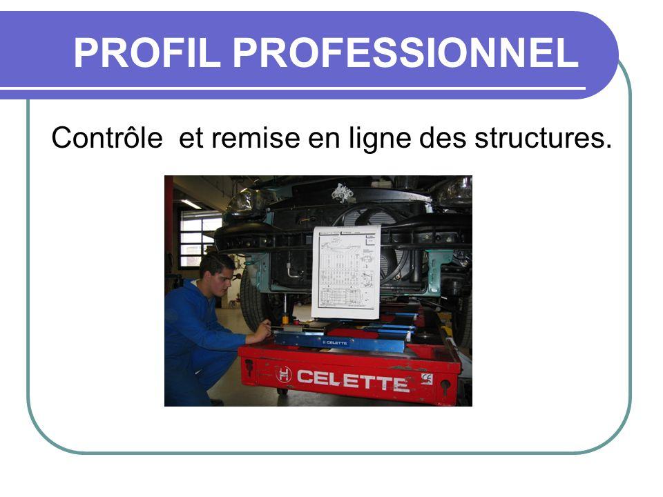 Contrôle et remise en ligne des structures. PROFIL PROFESSIONNEL