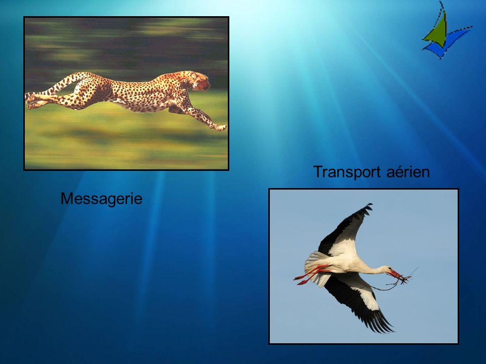 Messagerie Transport aérien