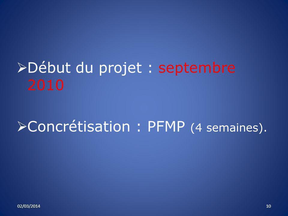 Début du projet : septembre 2010 Concrétisation : PFMP (4 semaines). 02/03/201410