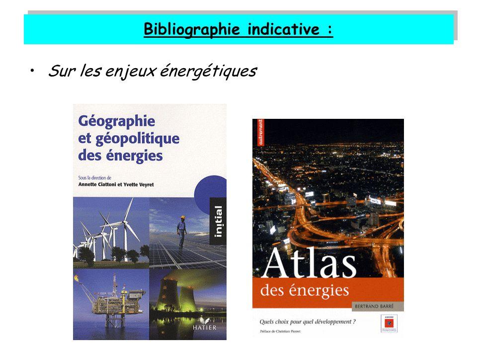 Bibliographie indicative : Sur les enjeux énergétiques