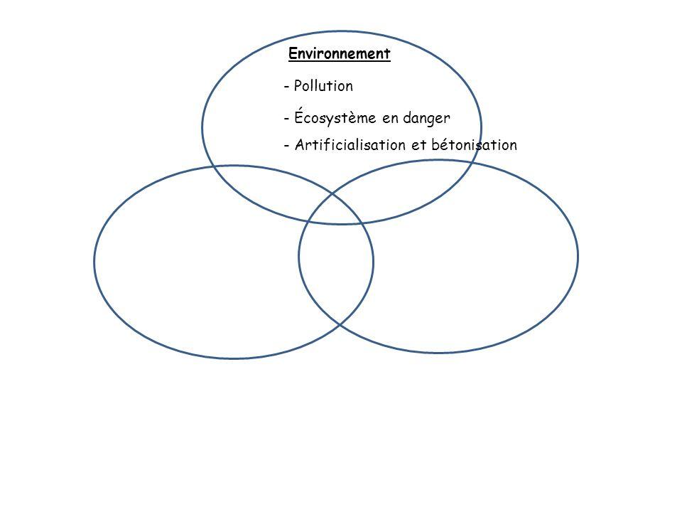 Environnement - Pollution - Écosystème en danger - Artificialisation et bétonisation