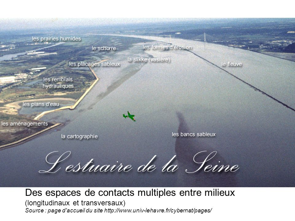 Des espaces de contacts multiples entre milieux (longitudinaux et transversaux) Source : page d accueil du site http://www.univ-lehavre.fr/cybernat/pages/