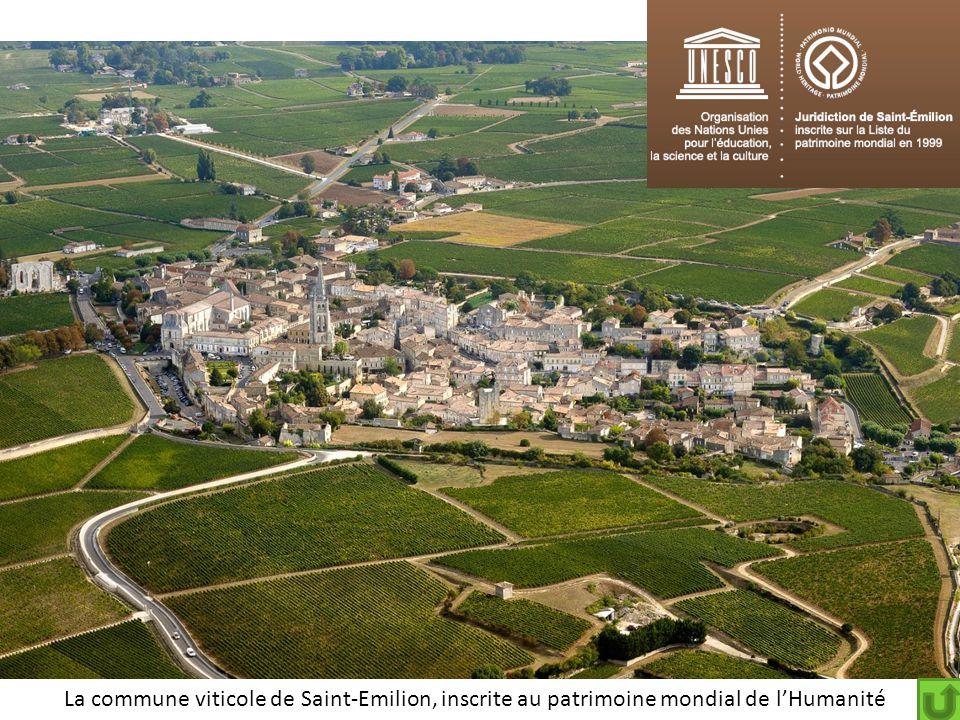La commune viticole de Saint-Emilion, inscrite au patrimoine mondial de lHumanité