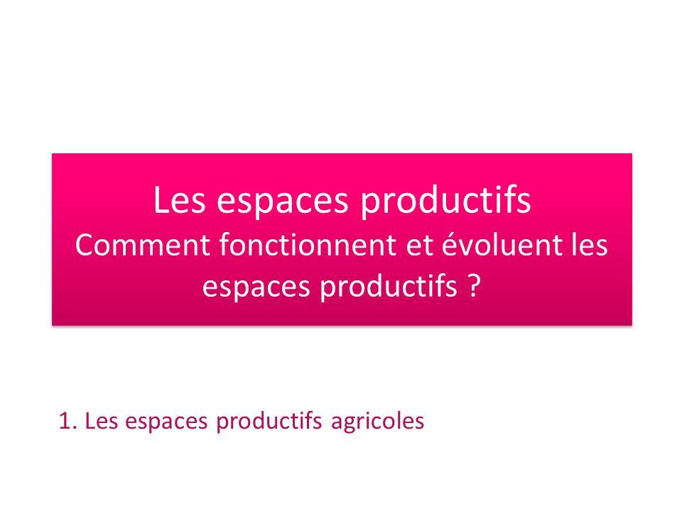 Interview de Gilles Brianceau, Directeur de Bordeaux Aquitaine InnoVin, publiée sur le site « Raudin » 1, 09/2010 Le métier a énormément évolué.
