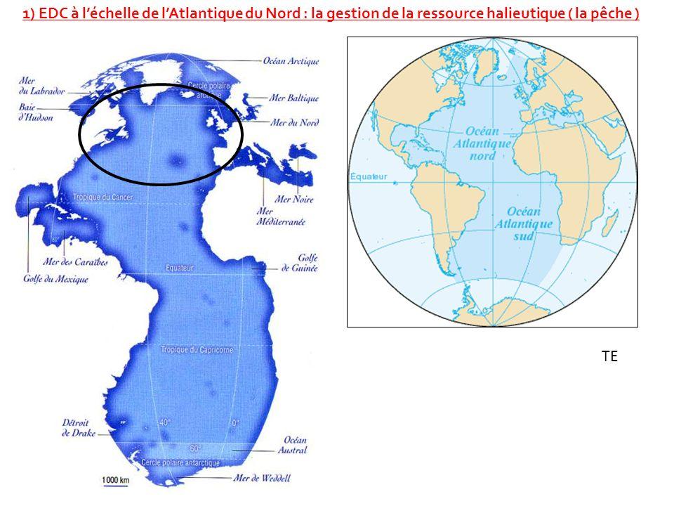 1) EDC à léchelle de lAtlantique du Nord : la gestion de la ressource halieutique ( la pêche ) TE