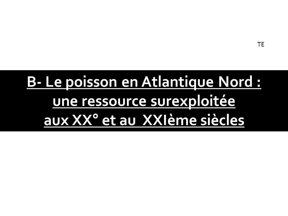 B- Le poisson en Atlantique Nord : une ressource surexploitée aux XX° et au XXIème siècles TE