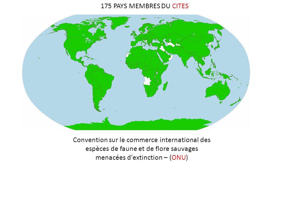 175 PAYS MEMBRES DU CITES Convention sur le commerce international des espèces de faune et de flore sauvages menacées d'extinction – (ONU)