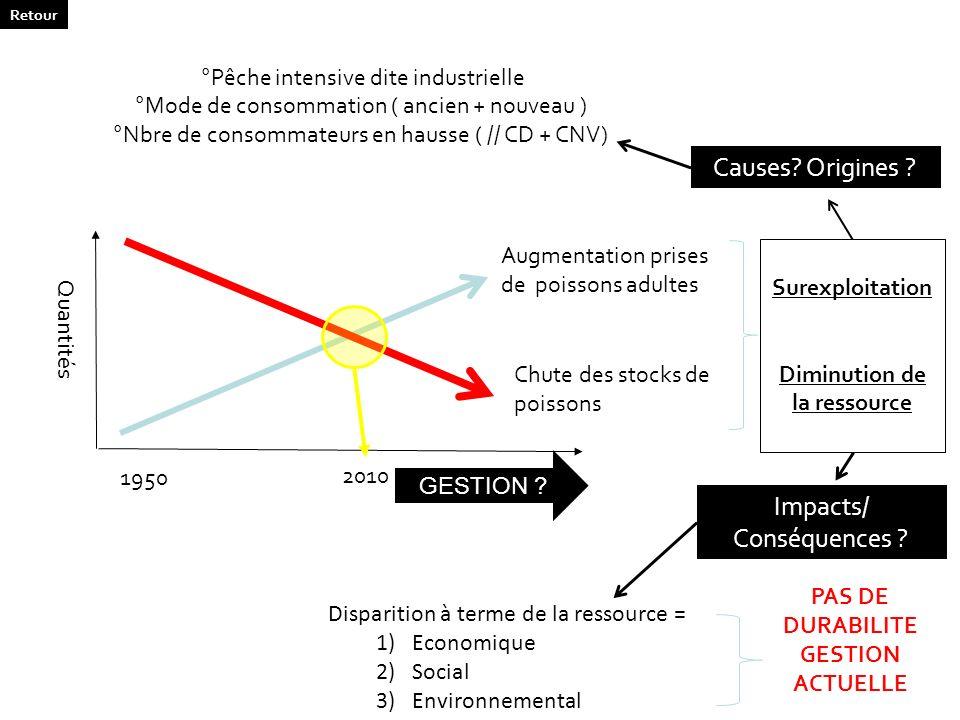 Chute des stocks de poissons Augmentation prises de poissons adultes Surexploitation Diminution de la ressource Quantités 1950 2010 GESTION ? Causes?