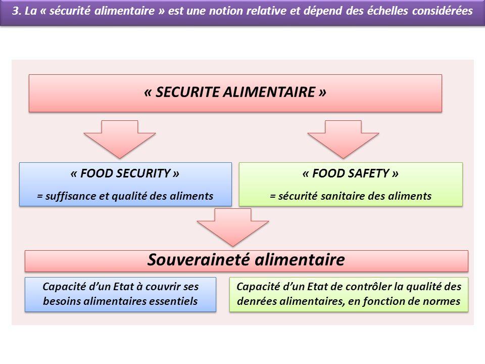 « SECURITE ALIMENTAIRE » 3. La « sécurité alimentaire » est une notion relative et dépend des échelles considérées « FOOD SECURITY » = suffisance et q