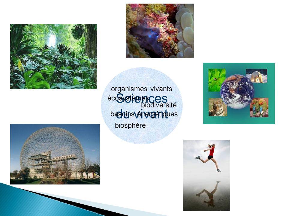 Sciences du vivant écosystèmes organismes vivants biosphère biodiversité besoins énergétiques