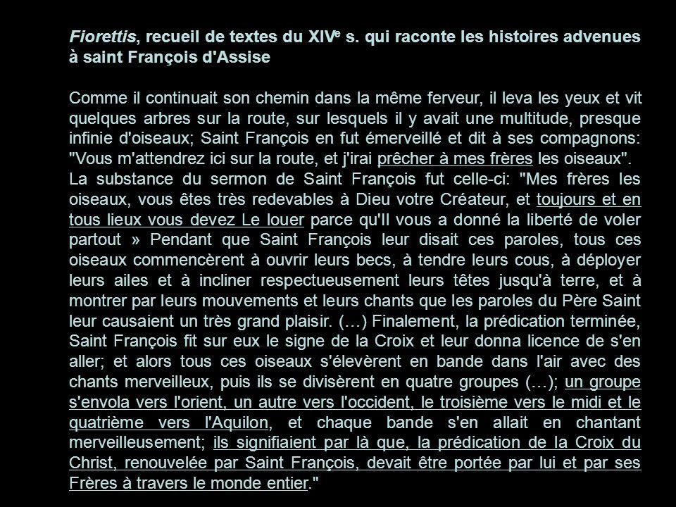Fiorettis, recueil de textes du XIV e s. qui raconte les histoires advenues à saint François d'Assise Comme il continuait son chemin dans la même ferv