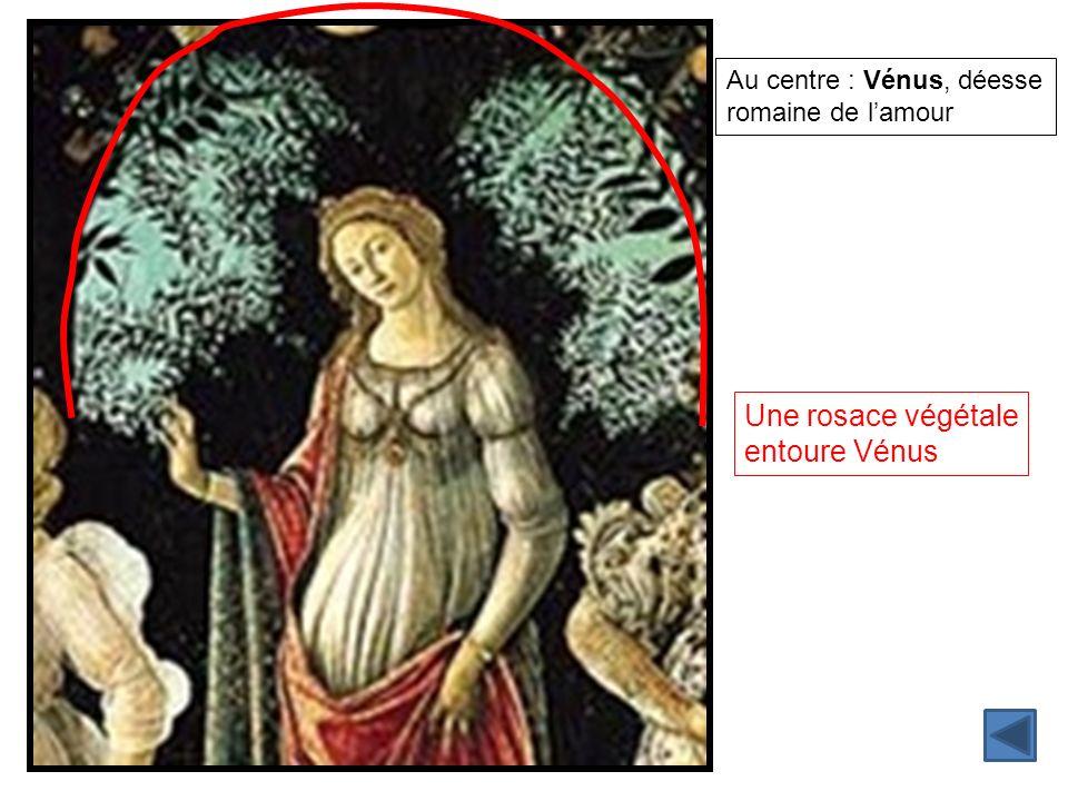 Au centre : Vénus, déesse romaine de lamour Une rosace végétale entoure Vénus