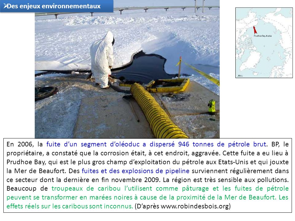 En 2006, la fuite dun segment doléoduc a dispersé 946 tonnes de pétrole brut. BP, le propriétaire, a constaté que la corrosion était, à cet endroit, a
