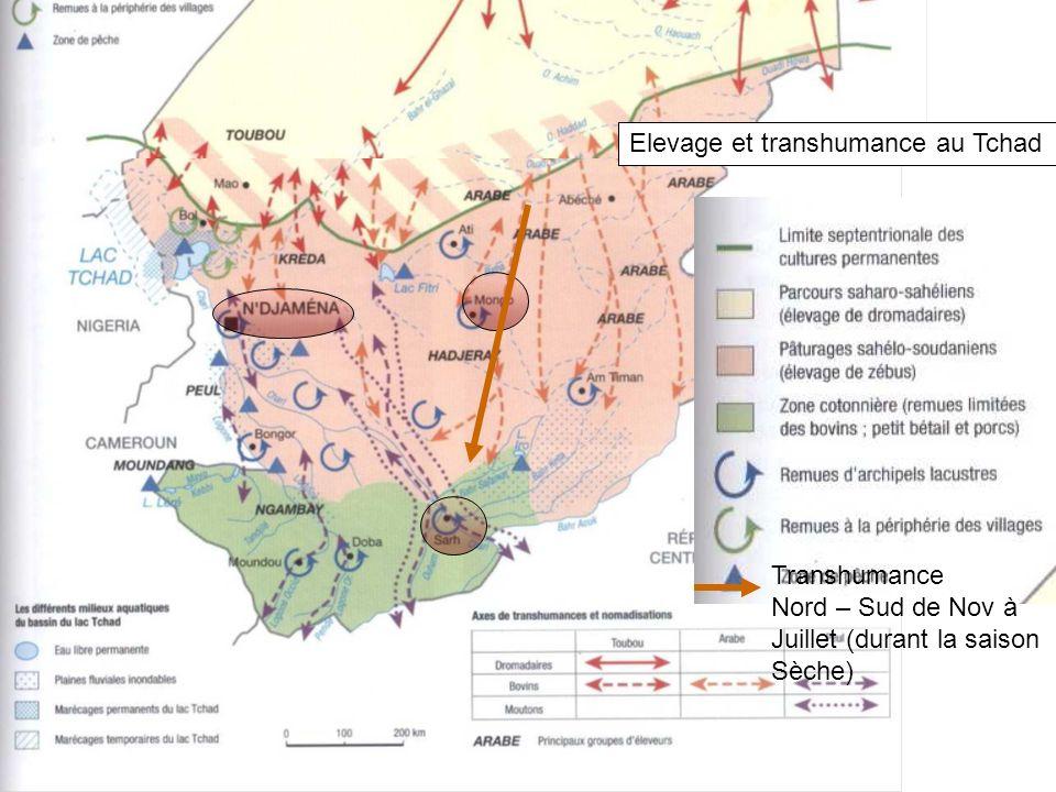 ELEVAGE ET TRANSHUMANCE AU TCHAD Elevage et transhumance au Tchad Transhumance Nord – Sud de Nov à Juillet (durant la saison Sèche)
