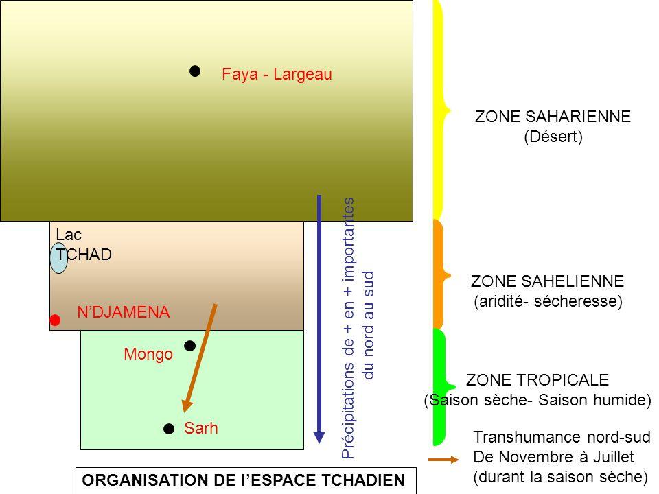 ZONE SAHARIENNE (Désert) ZONE SAHELIENNE (aridité- sécheresse) ZONE TROPICALE (Saison sèche- Saison humide) Mongo NDJAMENA Lac TCHAD ORGANISATION DE l