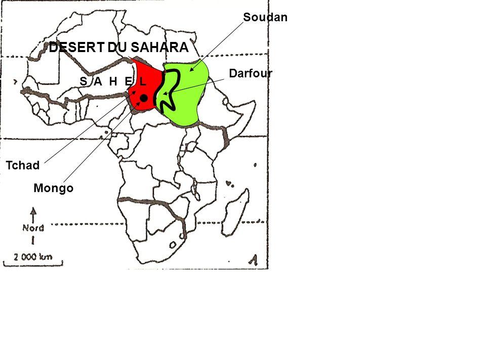 Tchad Soudan Darfour DESERT DU SAHARA S A H E L Mongo
