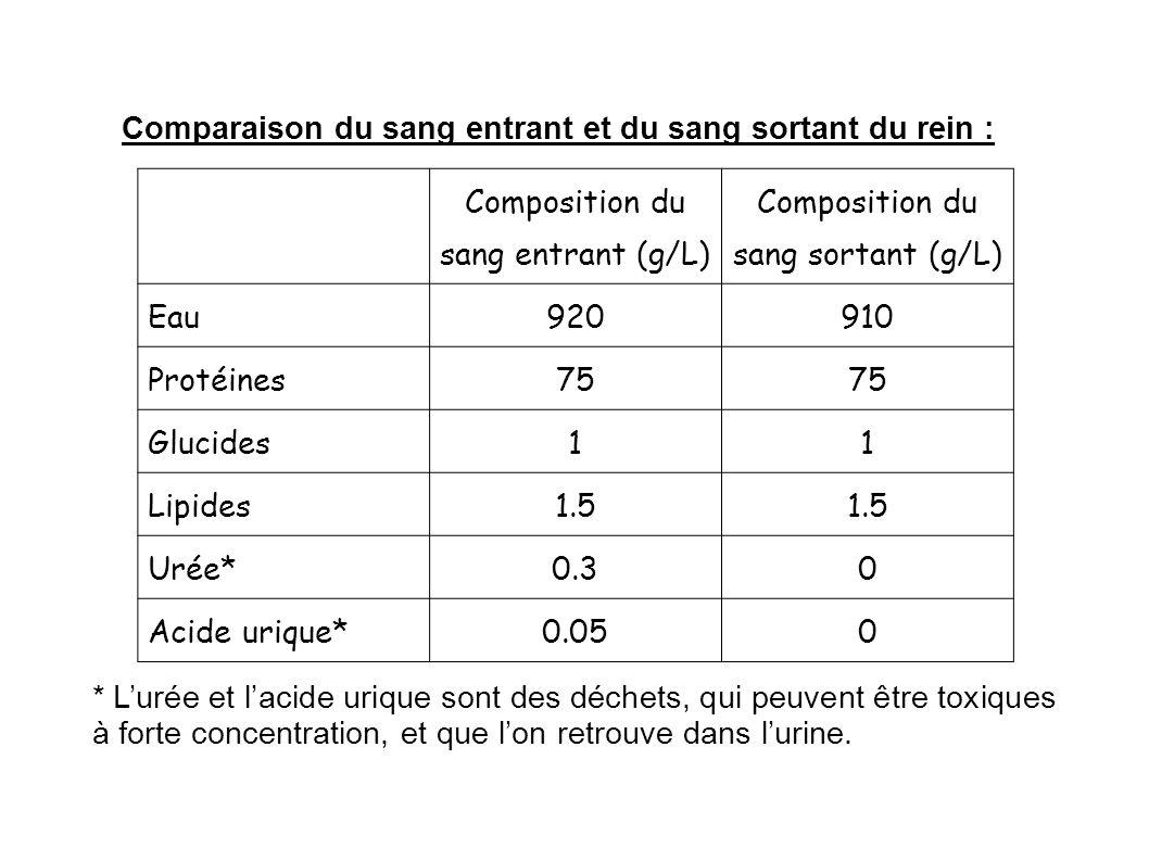 Comparaison du sang entrant et du sang sortant du rein : Composition du sang entrant (g/L) Composition du sang sortant (g/L) Eau920910 Protéines75 Glu