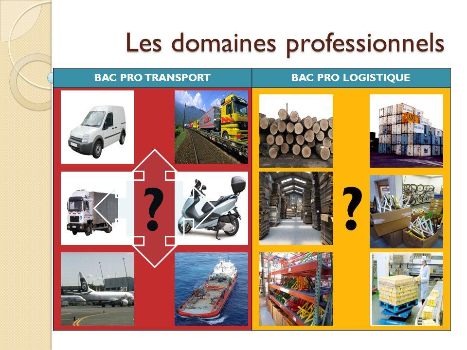 Les domaines professionnels BAC PRO TRANSPORTBAC PRO LOGISTIQUE ? ?