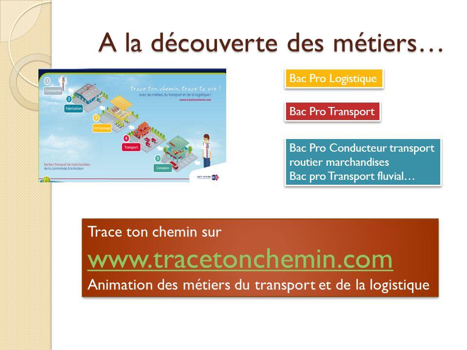 A la découverte des métiers… Bac Pro Transport Bac Pro Logistique Bac Pro Conducteur transport routier marchandises Bac pro Transport fluvial… Bac Pro