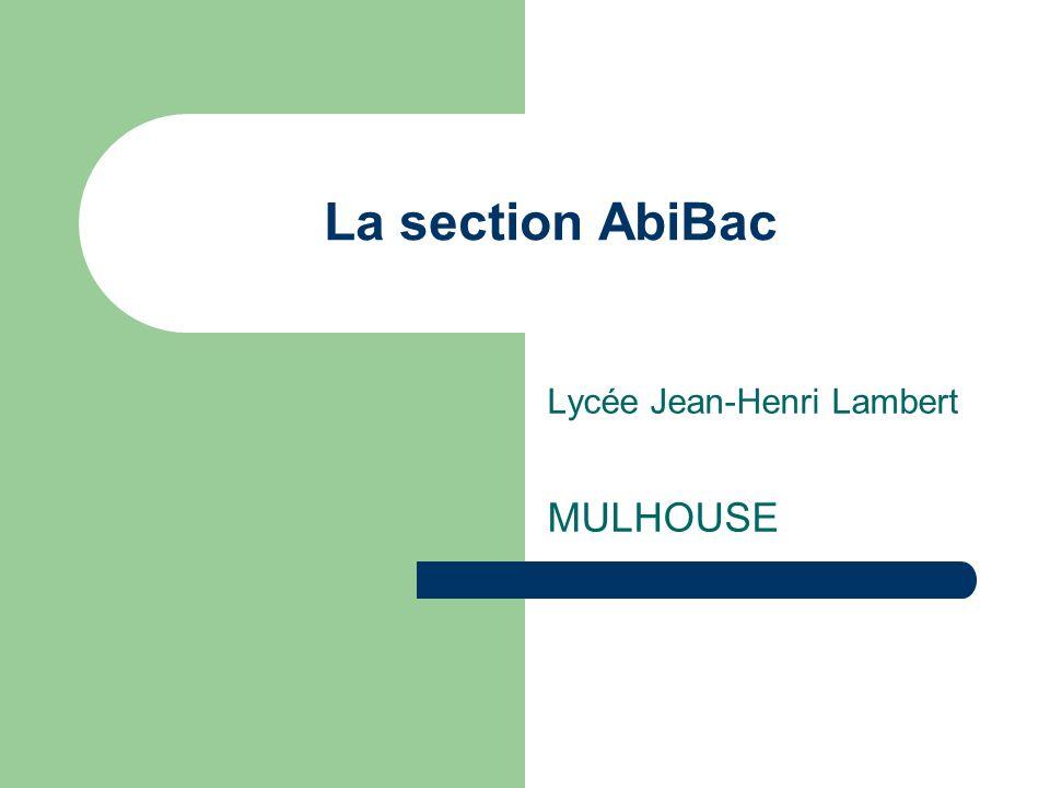 Public concerné / profil de lélève AbiBac = filière pour francophones (niveau C1 du Cadre Commun Européen des Langues) Élèves de collège issus de section bilingue de section européenne de classes bilangues de LV1 « classique »