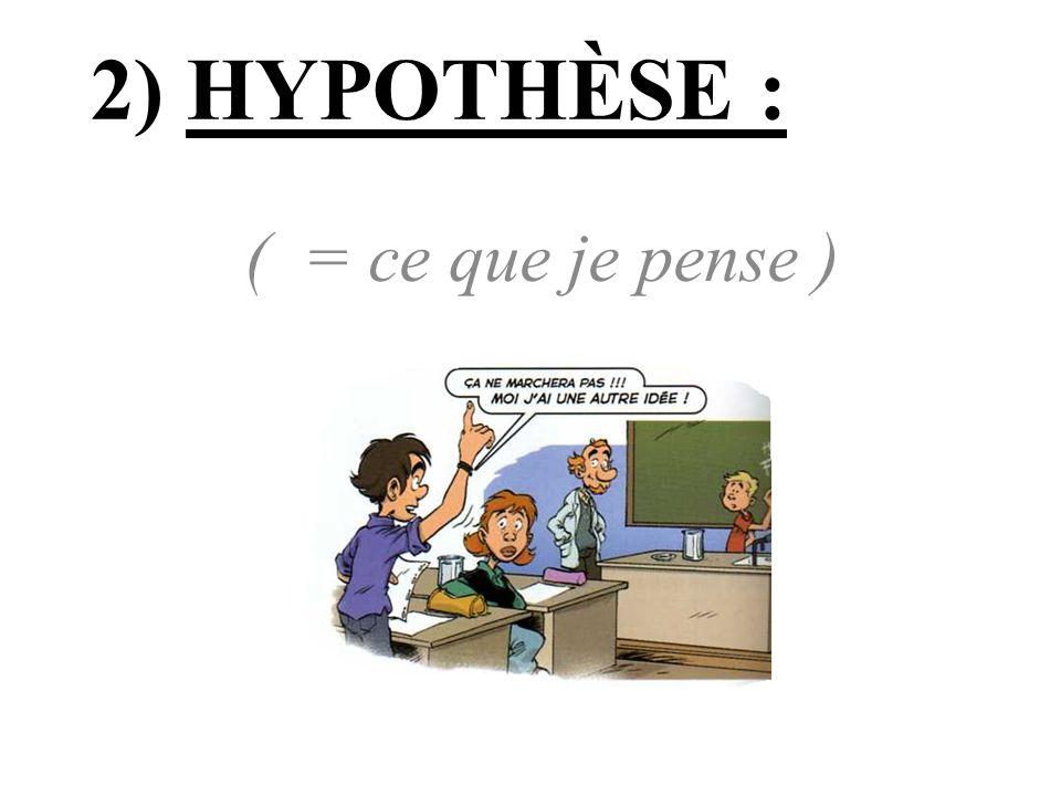 2) HYPOTHÈSE : ( = ce que je pense )