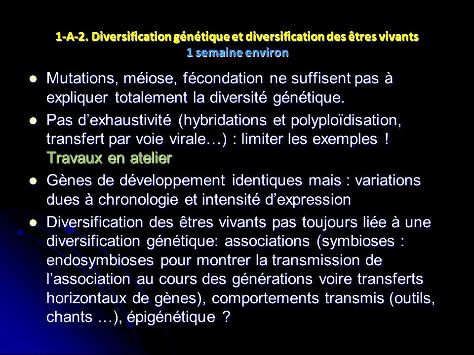 1-A-2. Diversification génétique et diversification des êtres vivants 1 semaine environ Mutations, méiose, fécondation ne suffisent pas à expliquer to