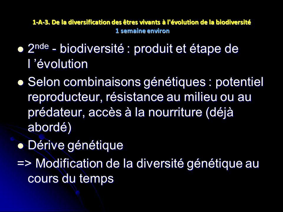 1-A-3. De la diversification des êtres vivants à l'évolution de la biodiversité 1 semaine environ 2 nde - biodiversité : produit et étape de l évoluti